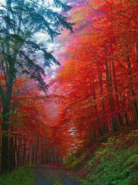 18 Fascinating Photos of Places in the Amazing Autumn