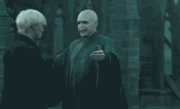 Draco Malfoy GIFs - Find & Share on GIPHY