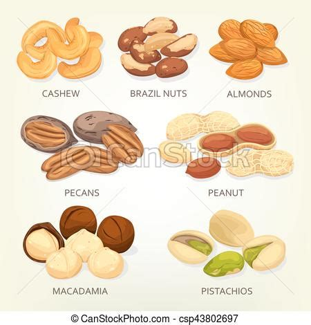 Brazil nuts and cashew fruit seeds, grains