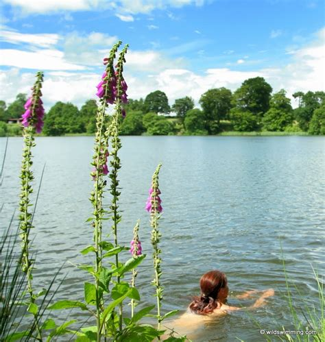 Colemere and Ellesmere | Wild Swimming - outdoors in
