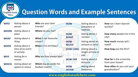 Question Words and Example Sentences - English Study Here