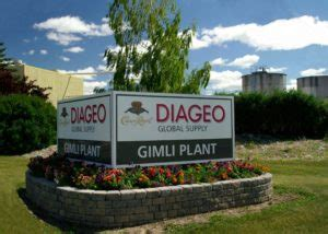 Dissecting Diageo – The Parent Company of Guinness Irish